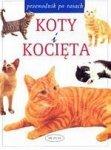Koty i kocięta