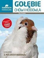 Gołębie Chów i hodowla