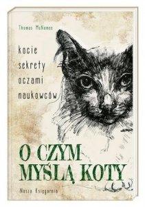 O czym myślą koty Kocie sekrety oczami naukowców