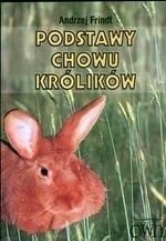 Podstawy chowu królików
