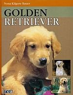 Golden Retriever /REA