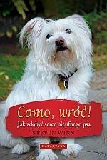 Como wróć Jak zdobyć serce nieufnego psa