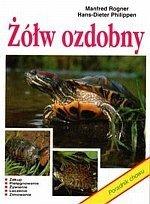 Żółw ozdobny Poradnik chowu