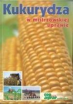 Kukurydza w mistrzowskiej uprawie