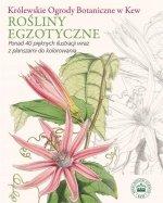 Rośliny egzotyczne Królewskie Ogrody Botaniczne w Kew