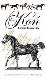 Koń Kompendium wiedzy