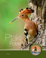 Ptaki Polski tom 1 + Płyta z nagraniami głosów ptaków