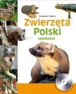 Zwierzęta Polski