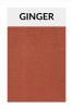 TI005 ginger