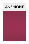 TI003 anemone