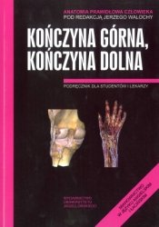 Kończyna górna kończyna dolna Anatomia prawidłowa człowieka Podręcznik dla studentów i lekarzy