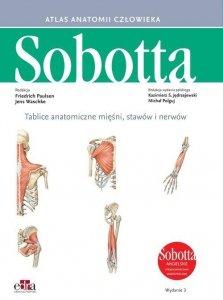 Tablice anatomiczne mięśni, stawów i nerwów Angielskie mianownictwo