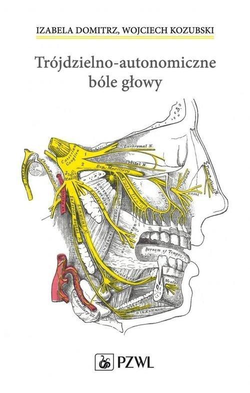 Trójdzielno-autonomiczne bóle głowy