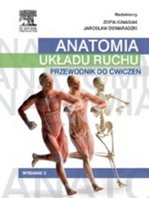 Anatomia układu ruchu Przewodnik do ćwiczeń
