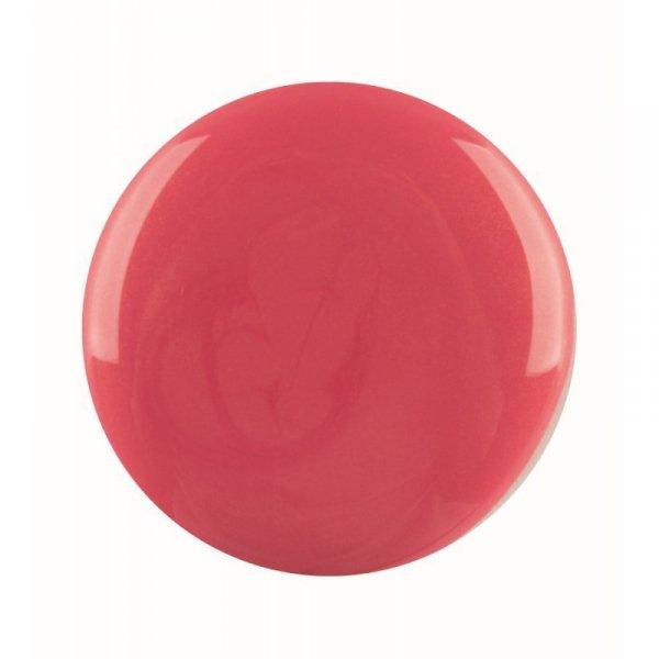 Akryl do manicure tytanowego kolor My Kind Of Ball Gown DIP 23 g (1610160)