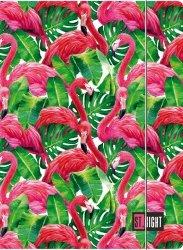 Teczka rysunkowa A4 z gumką FLAMINGO PINK & GREEN (05190)