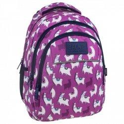 Plecak szkolny młodzieżowy BackUP LAMY (PLB2H03)