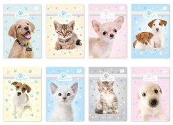 Zeszyt A5 w kolorową linię 32 kartki Puppy Sign (38054)