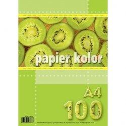 Papier ksero A4 KOLOROWY MIX 80g 100 arkuszy (00993)
