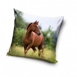 Poszewka na poduszkę HORSES Konik 40 x 40 cm (PNL201057)