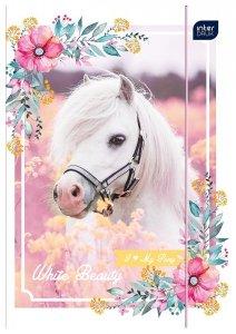 Teczka rysunkowa A4 z gumką HORSE Konie (66927)