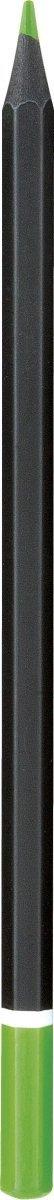 Kredki ołówkowe czarne drewno 12 KOLORÓW + temperówka, ASTRA (312114001)