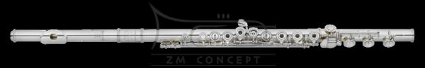 AMADEUS by HAYNES flet AF680SE-BO14K; posrebrzany, srebrna głowa z 14k złotym kominkiem, otwarte klapy, G offset, E-mechanika, stopa H, z futerałem