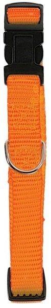 Zolux Obroża nylonowa regulowana 40mm - pomarańczowa