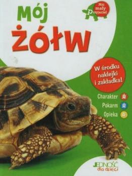 Mój żółw. Mój mały przyjaciel