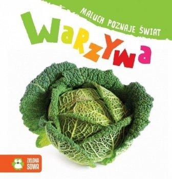 Maluch poznaje świat. Warzywa