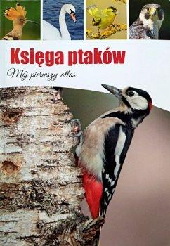 Księga ptaków. Oprawa miękka