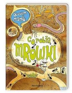 Nasza księgarnia Książka Opowiem ci, mamo, co robią mrówki