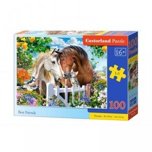 Puzzle 100 best friends