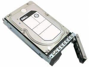 Dell Server HDD 10TB 3.5 7200 RPM, Hot-swap, NL-SAS, 512e, (PowerEdge 14G: R240,R340,R440,R540,R640,R740,R740XD)