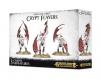 Warhammer AoS - Crypt Flayers