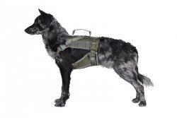 Szelki taktyczne dla psa - ranger green