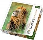 Puzzle 1000 Trefl 10517 Nature - Lew