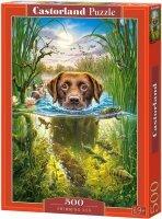 Puzzle 500 Castorland B-52882 Pies Pływacki