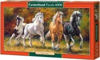 Puzzle 4000 Castorland C-400119 Konie - Born to Run
