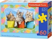 Puzzle 60 Castorland B-06762 Trzy Kotki