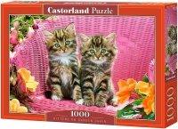 Puzzle 1000 Castorland C-103775 Dwa Kotki