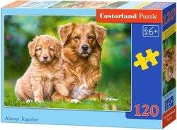 Puzzle 120 Castorland B-13265 Dwa Psy