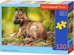 Puzzle 120 Castorland B-13258 Piesek