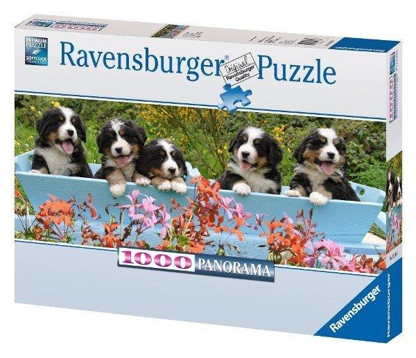Puzzle 1000 Ravensburger 151165 Psy Berneńskie - Panorama