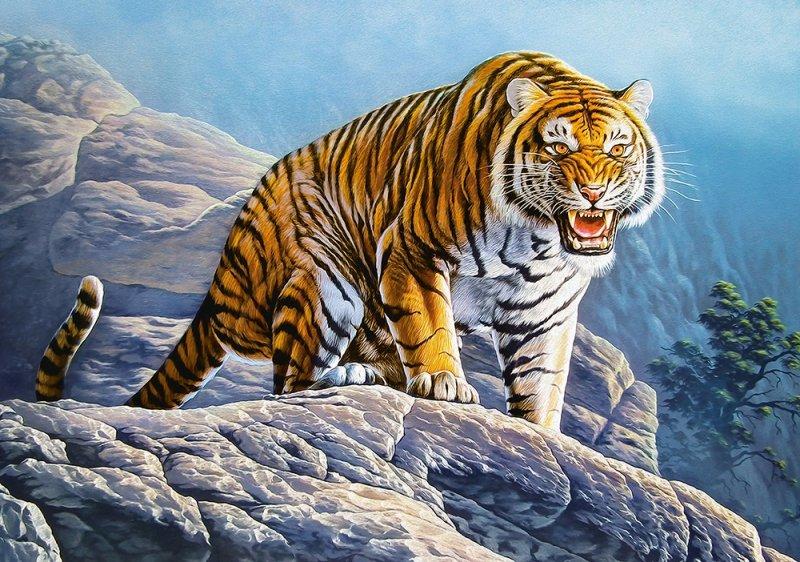 Puzzle 500 Castorland B-53346 Tygrys