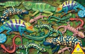 Puzzle Salamandry