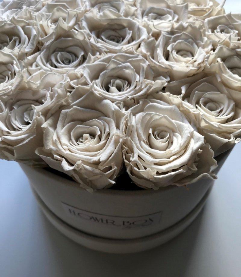 NOWOŚĆ! Kremowe WIECZNE żywe róże w flokowanym boxie