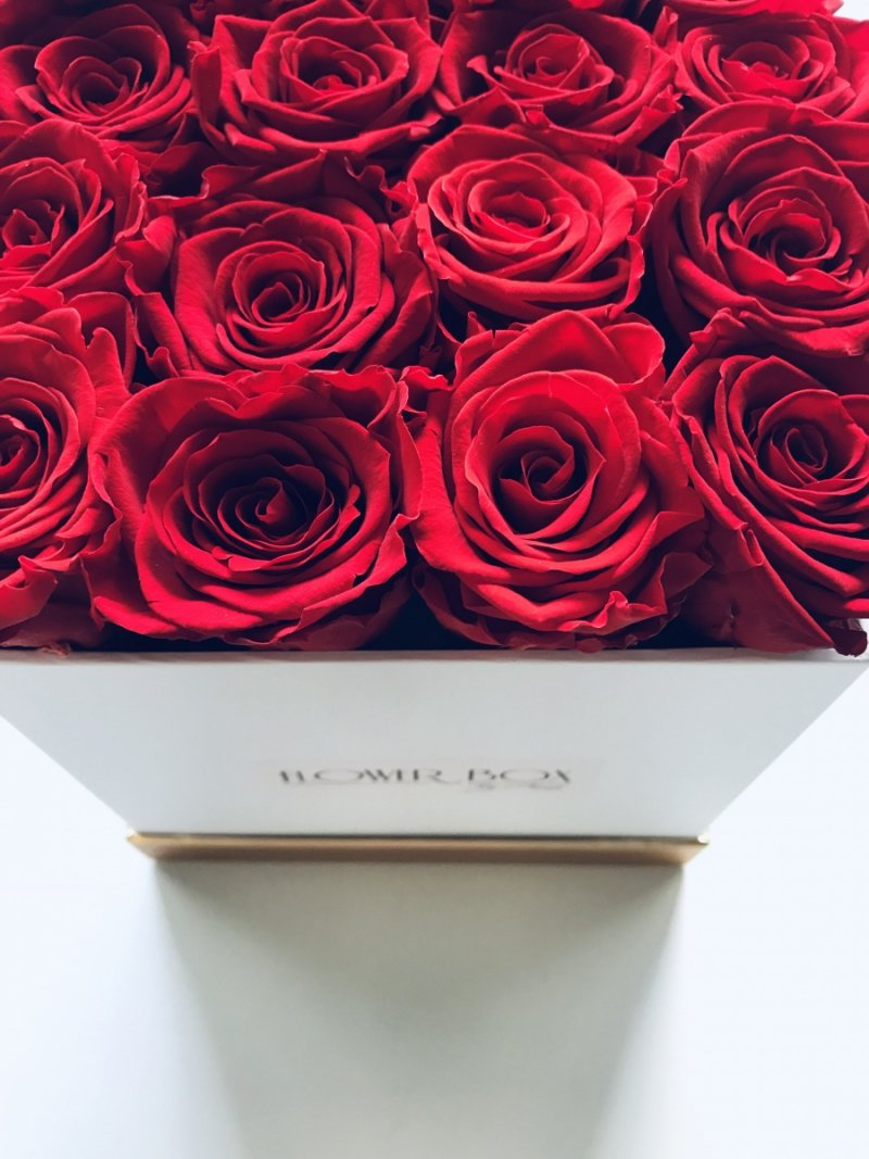 Czerwone żywe WIECZNE róże w kwadratowym białym boxie