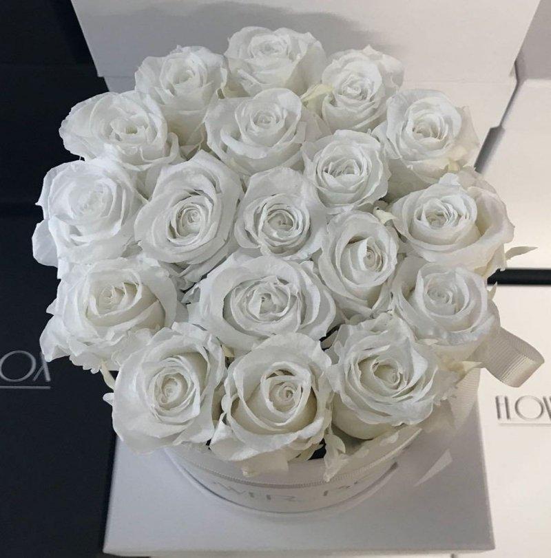 Białe żywe WIECZNE róże w średnim białym boxie