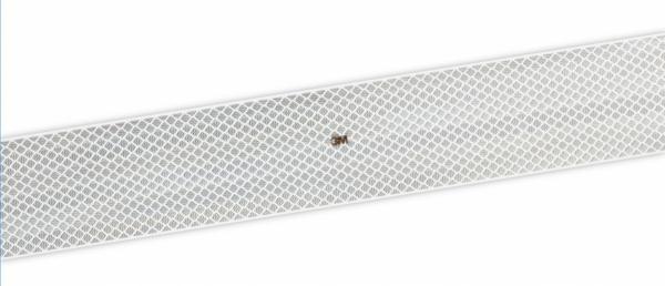 3M DG3 Taśma konturowa serii 983 biała- rolka